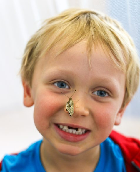 A young student with a butterfly on his nose.