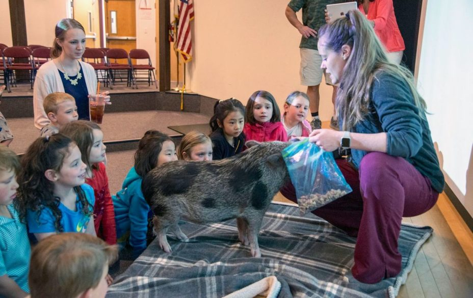 alumni with show and tell pig